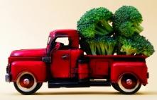 broccoli cruciferous vegetables