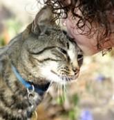 kiss cat- transmission of parasites