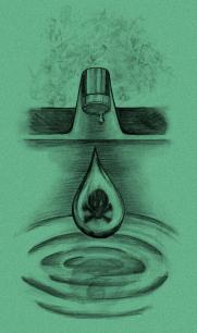 Poison fluoride and chlorine tapwater