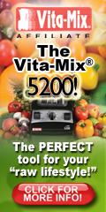 Vitamix TurboBlend VS